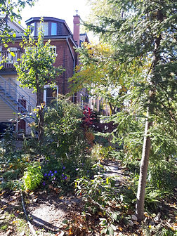 garden and house.jpg