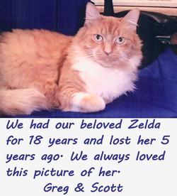 Zelda-text