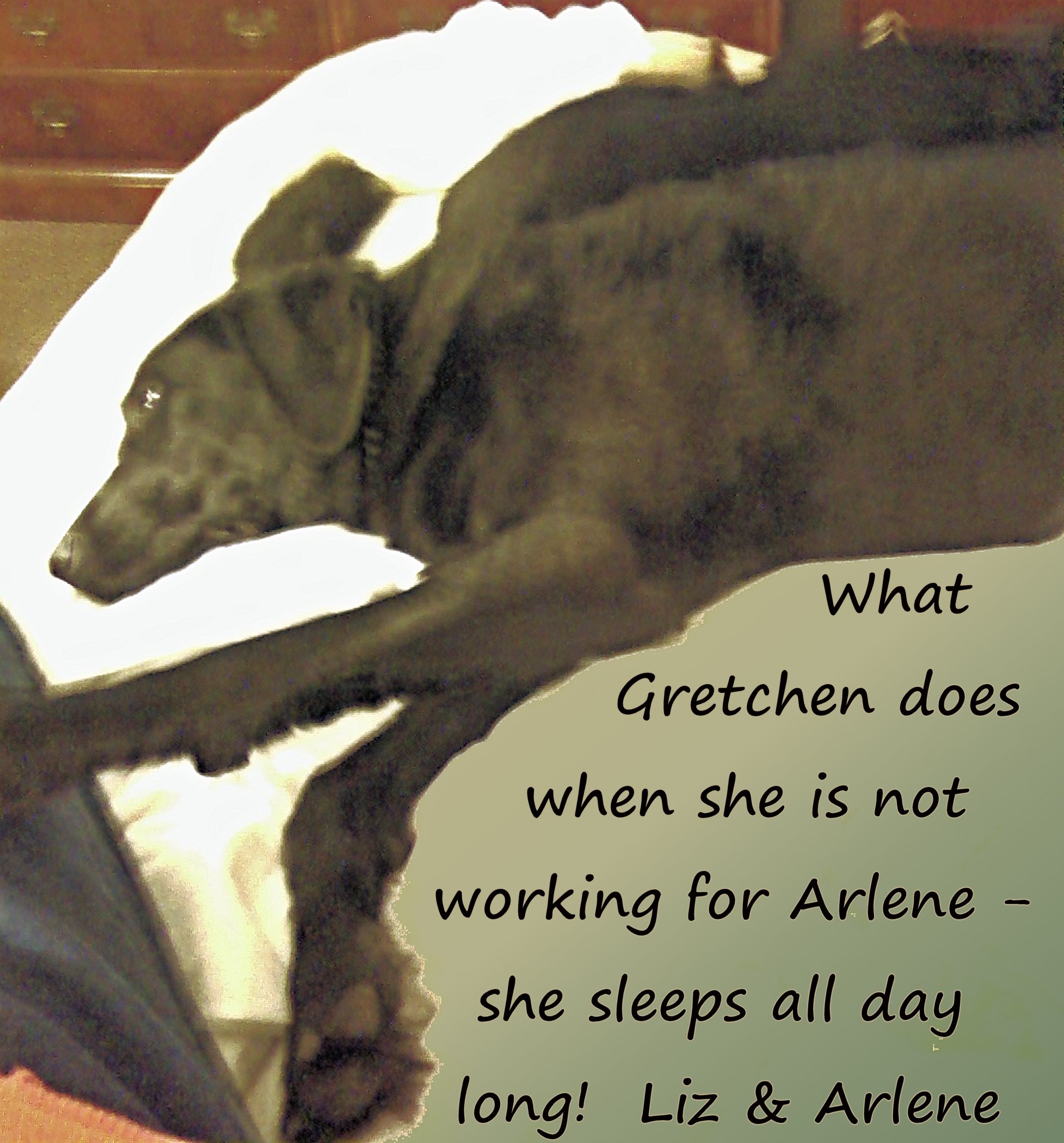 Gretchen off duty-text