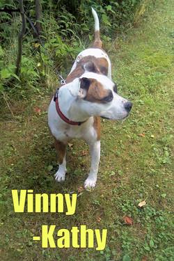 Vinny-text