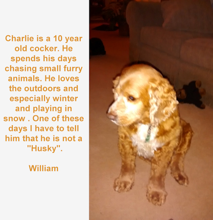 20150112Charley9-text