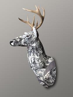Deer29d