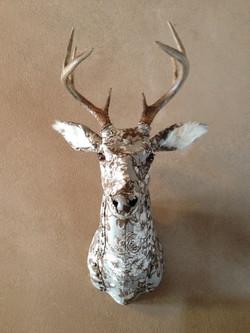 Deer1a