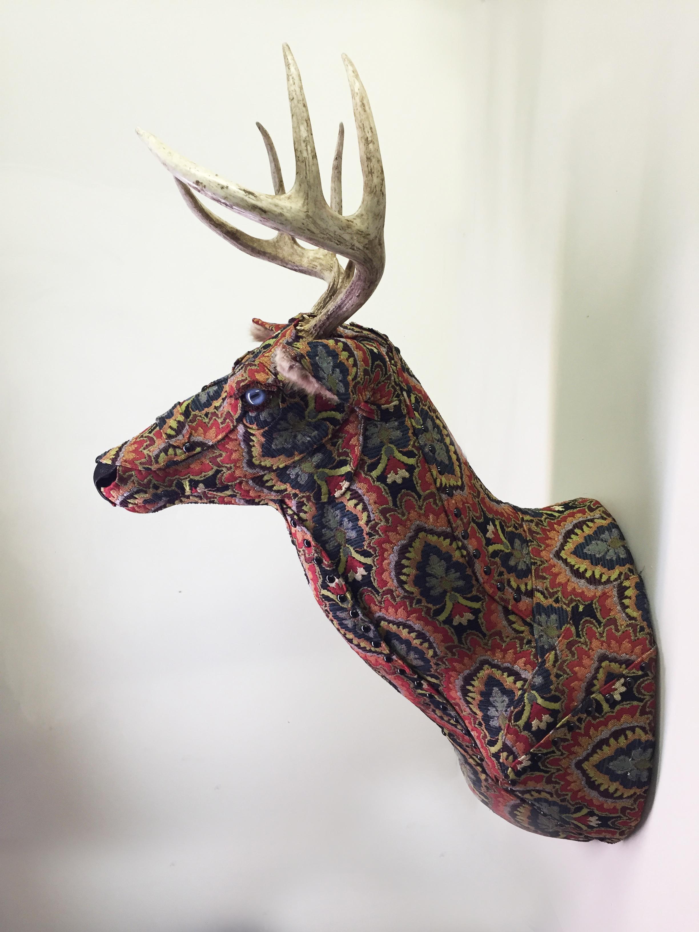 Deer13b