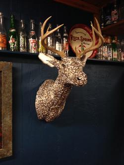 Deer6g