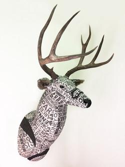 Deer25b