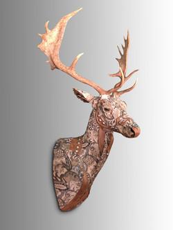 Deer33a