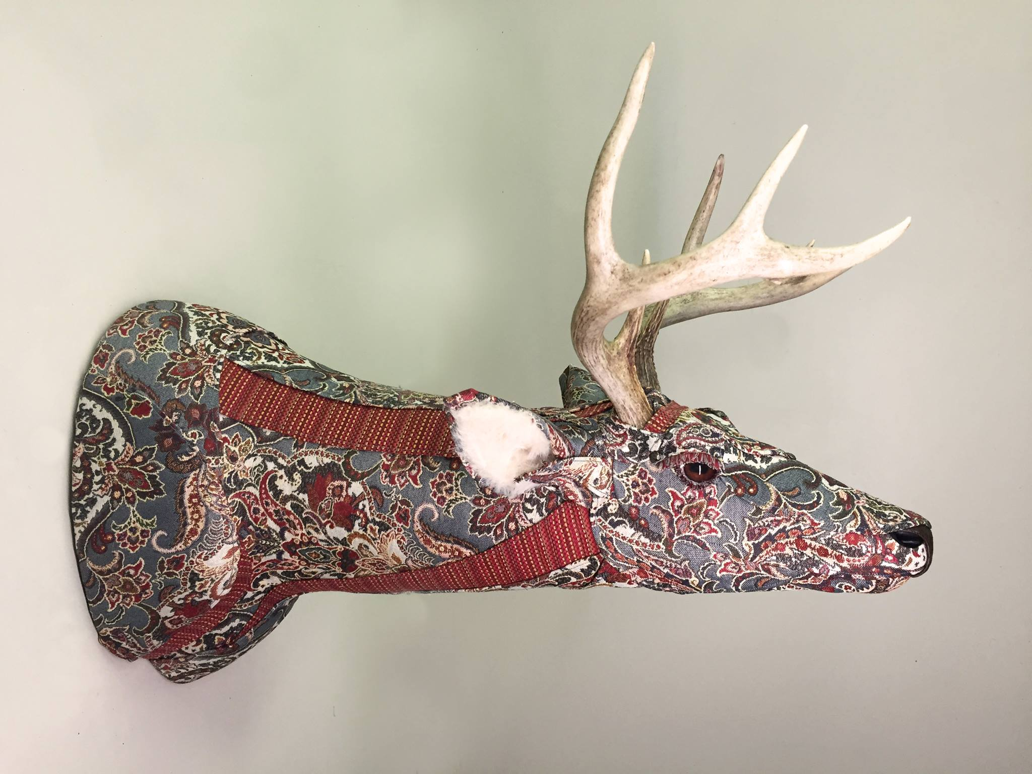Deer22a