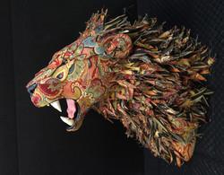 Lion7a