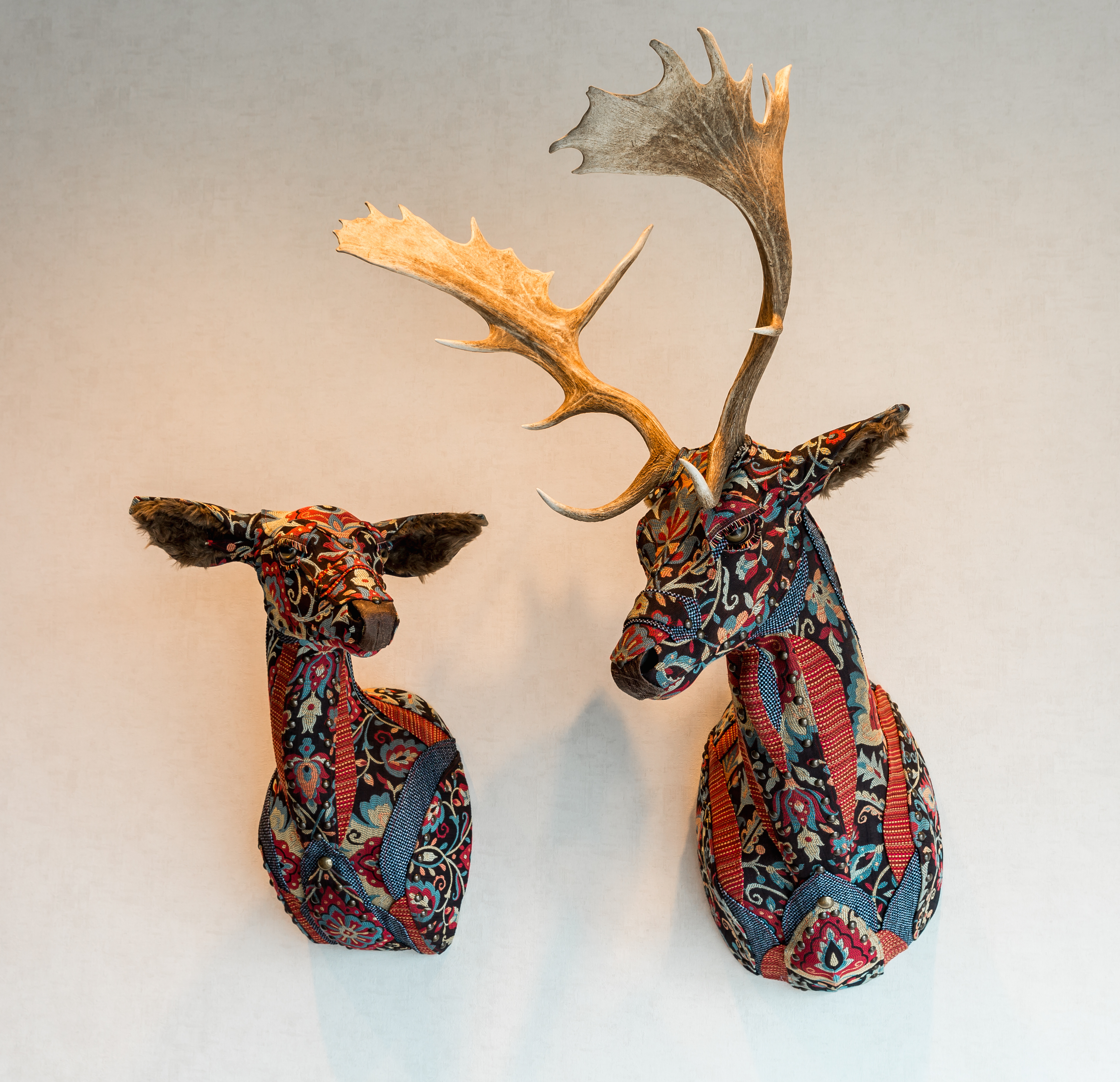Deer19&20fallow