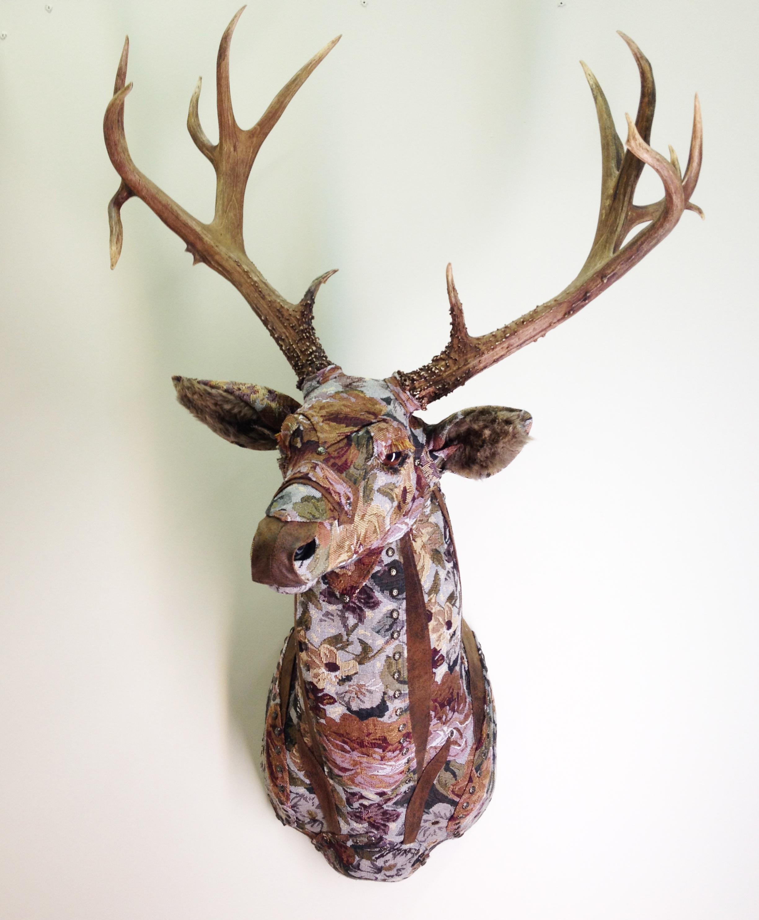 Deer11a