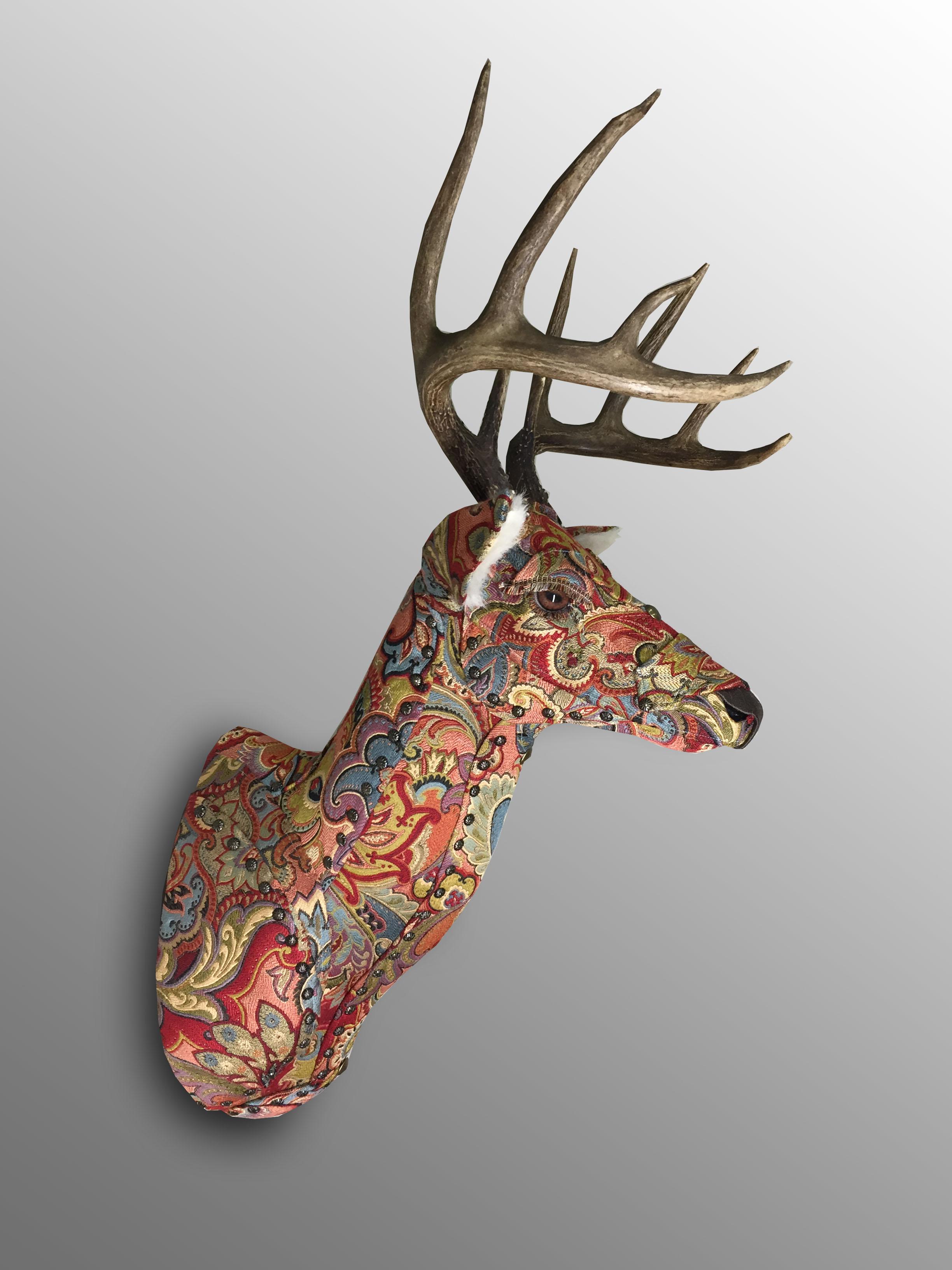 Deer30a
