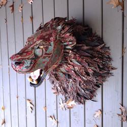 Lion24a