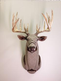 Deer9a