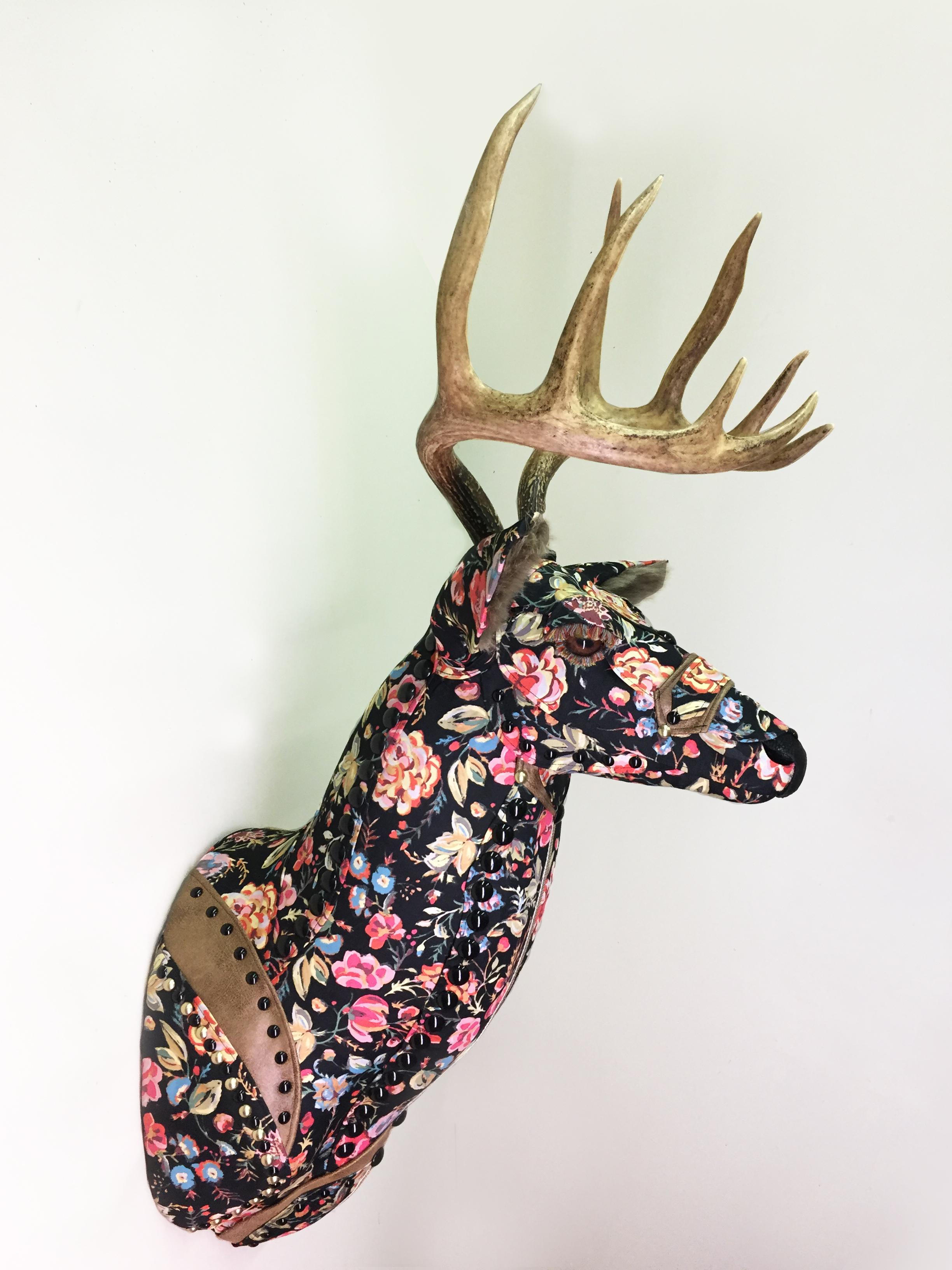 Deer26b