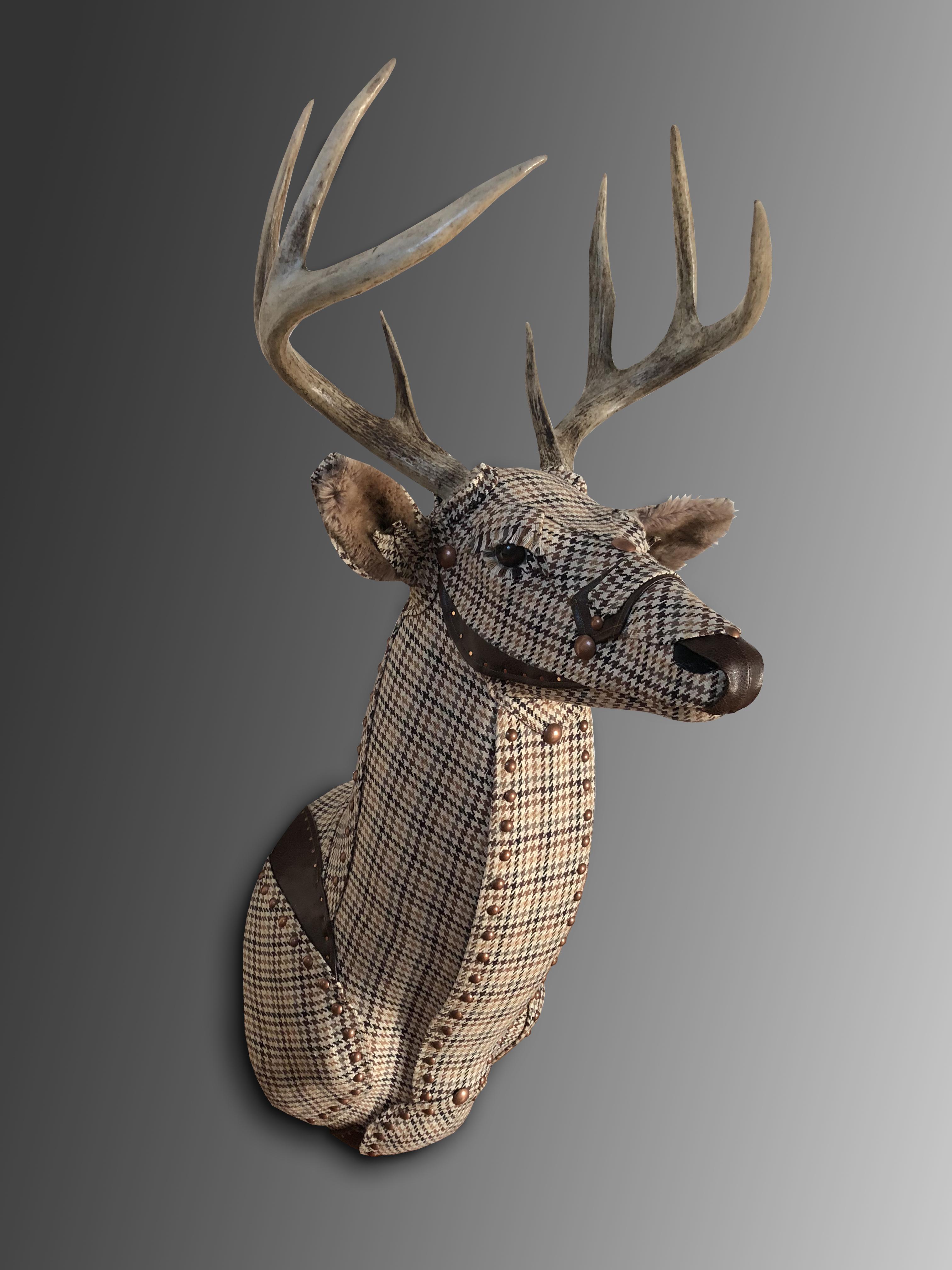Deer36b