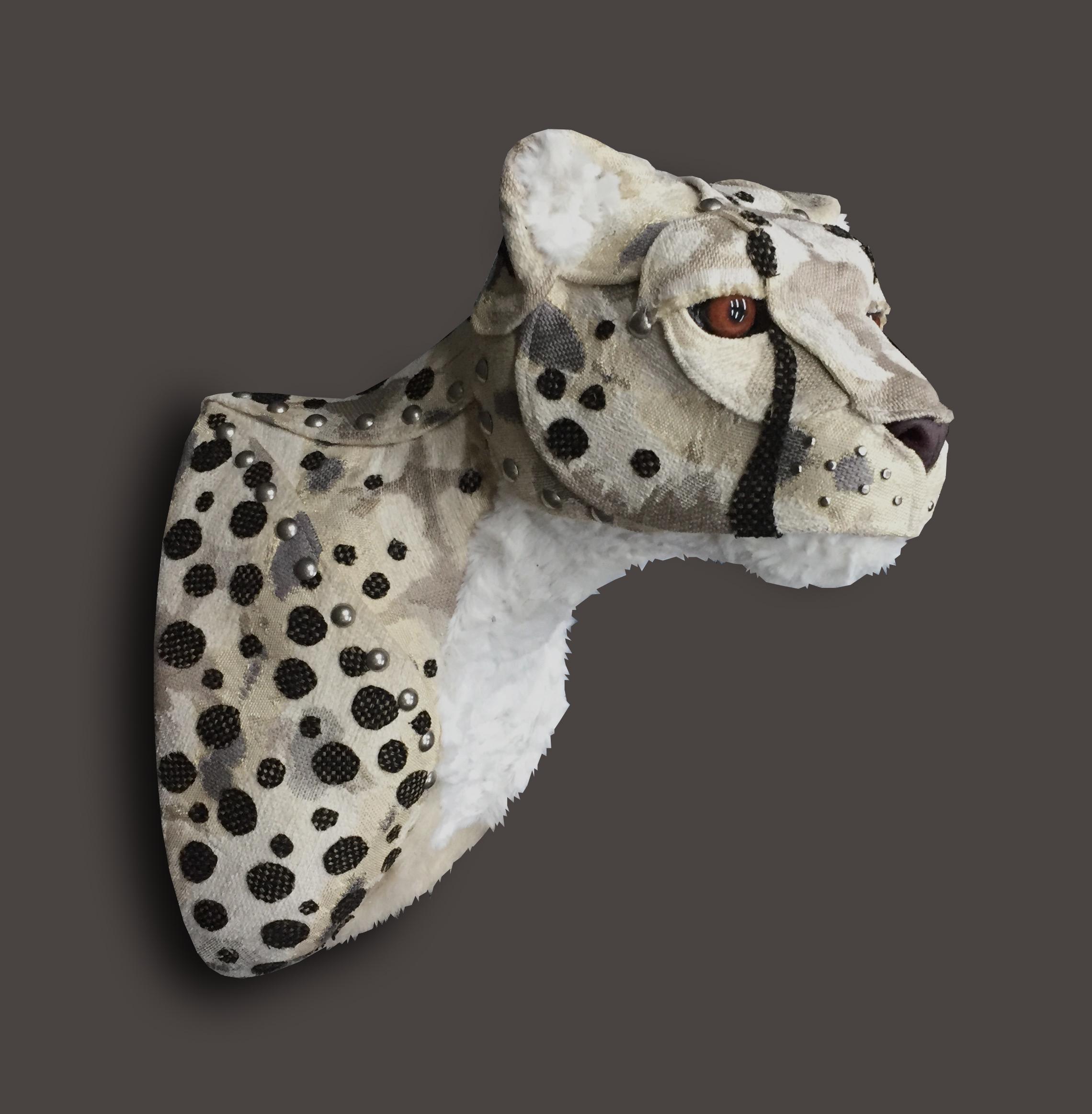 Cheetah1b