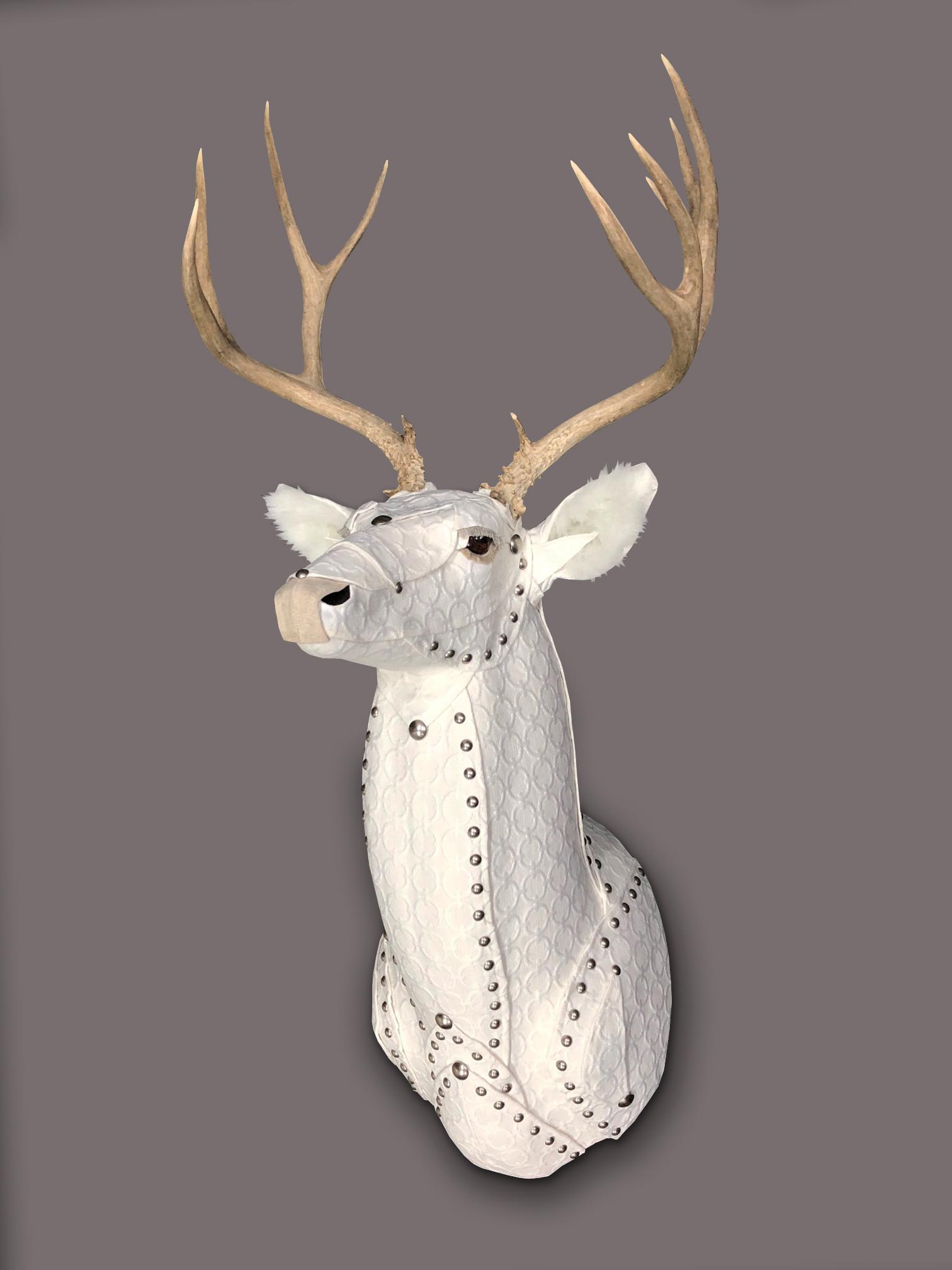 Deer32b