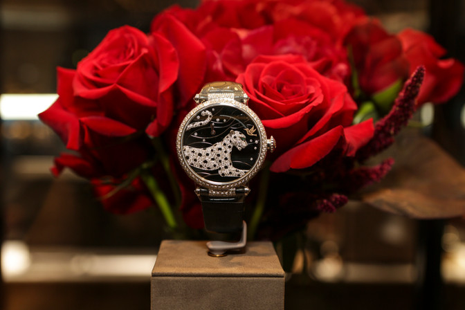 Cartier New Collection Launch