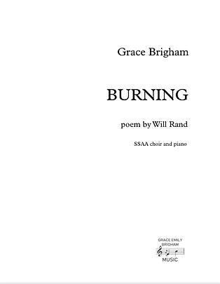 Burning SSAA Cvr.jpg