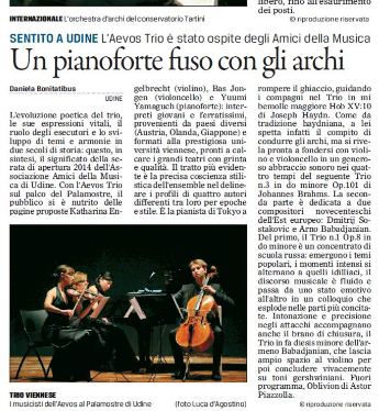 Concert in Udine, Italy 2014