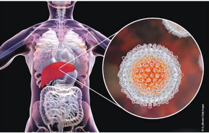 Hepatitis C virus affects your liver. For treatment consult your Gastroenterologist.