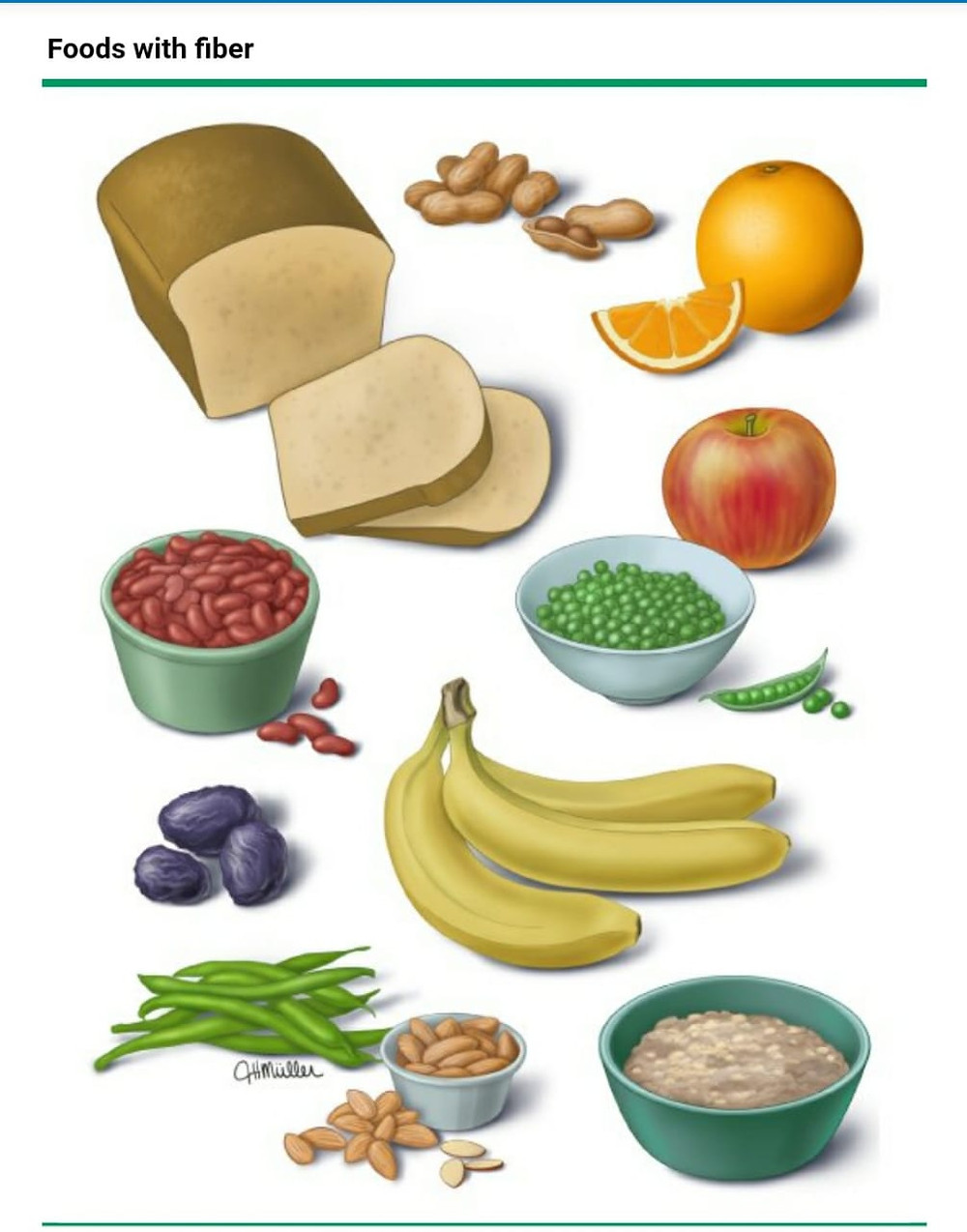 Food that have fibre-Consult your Gastroenterologist