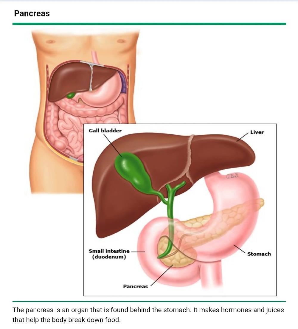 Pancreatitis( Acute pancreatitis) is treated by a Gastroenterologist