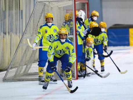 Хоккейная неделя прошла в Ульяновске