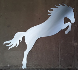 Mustang S/Steel