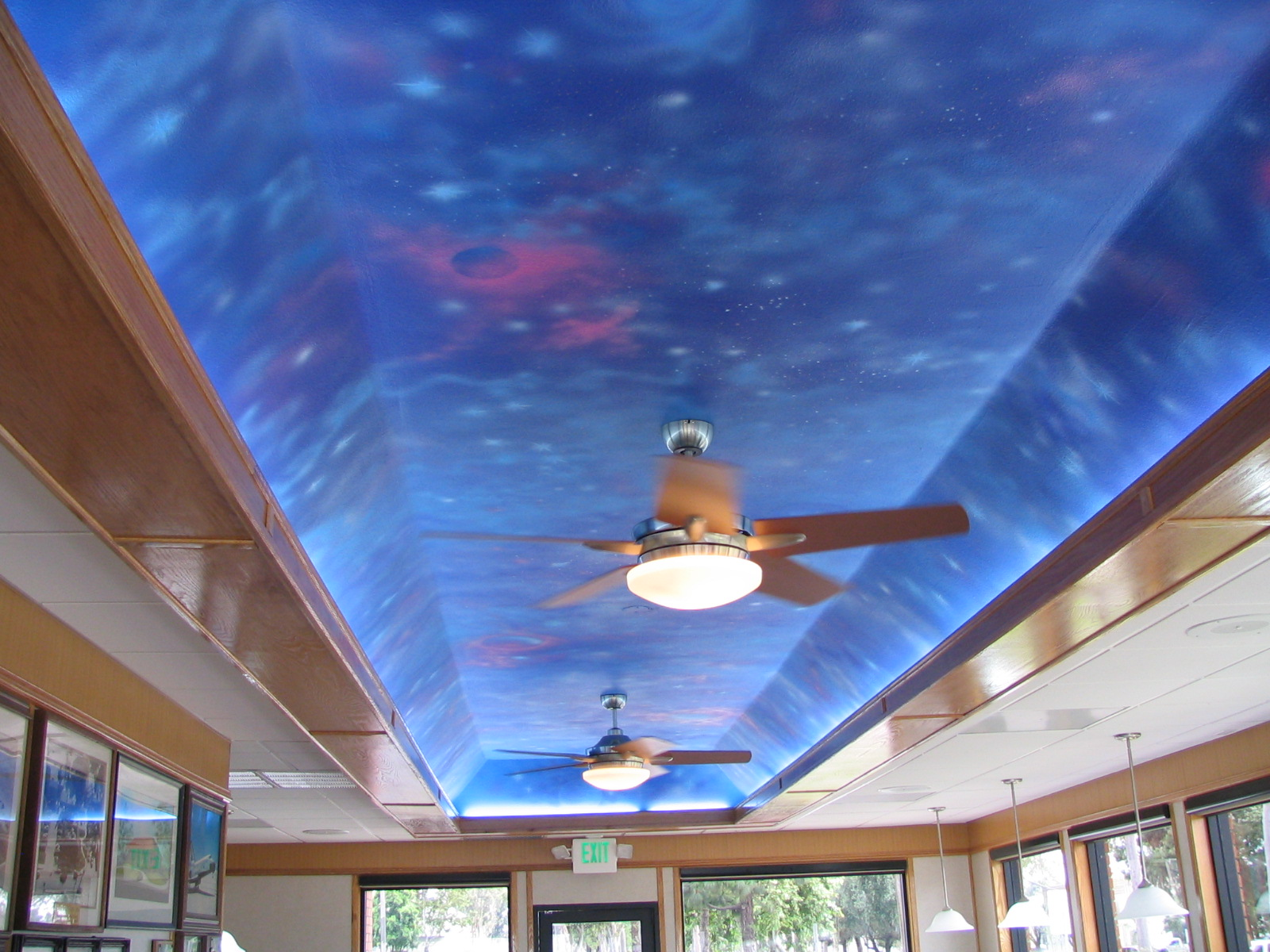 (AFTER). Ceiling Mural-Night Sky.