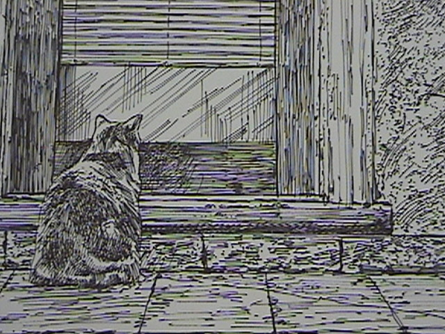 CAT DRAWING CREATED BY PAUL MAXWELL GODFREY