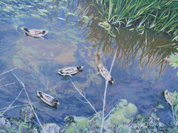 HANDPAINTED MURAL DUCKS IN THE POND created by Paul Maxwell Godfrey