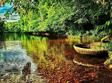 Wayanad-Coorg Holiday Package