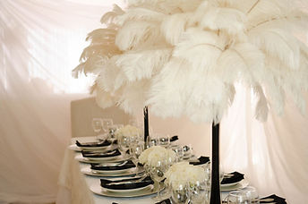 PEJEvents Centerpieces, feathers