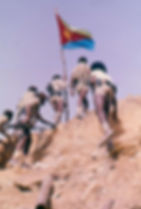 Eritrean national movement