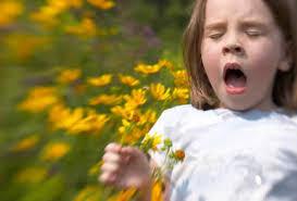 重新認識鼻敏感(2):過敏性 VS 非過敏性鼻炎