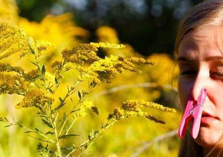 重新認識鼻敏感( 3 ):過敏與非過敏鼻炎的特徵