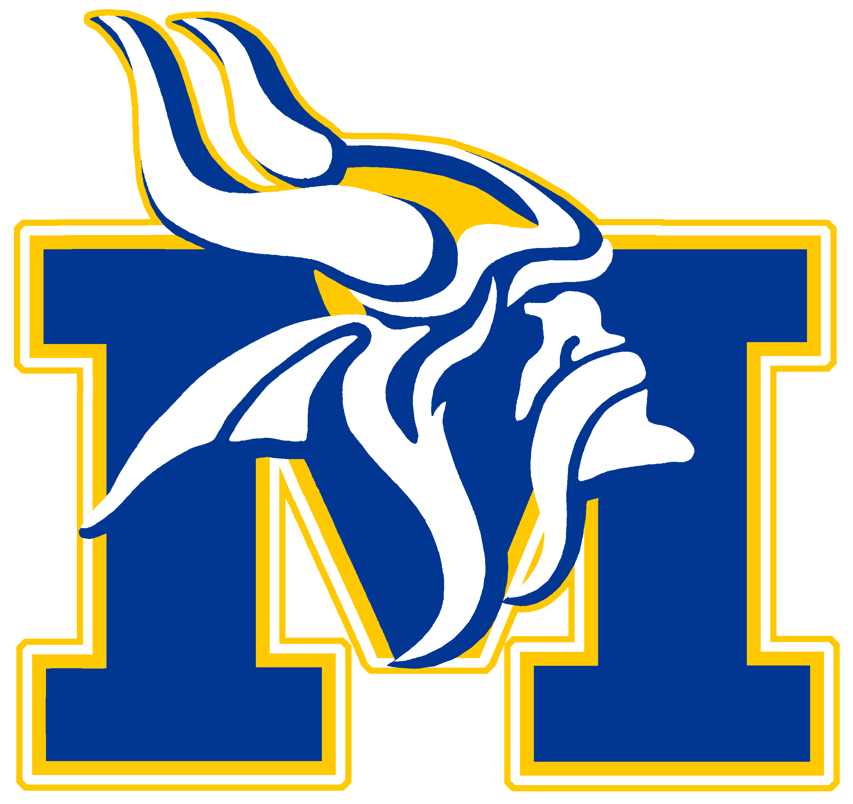 Image result for minneota vikings
