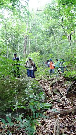 Wilderness Tasks