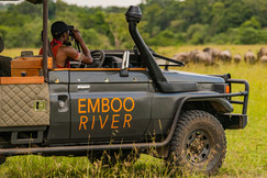 The Great Migration at Emboo River
