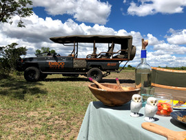 Lunch in the savannah