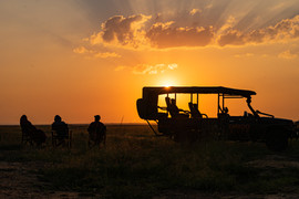 Watch the sunset in the savannah