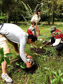 Tree Planting at emboo River