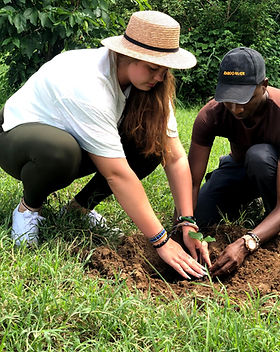 Tree Planting Masai Mara