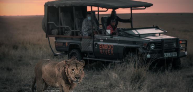 Emboo River Safari