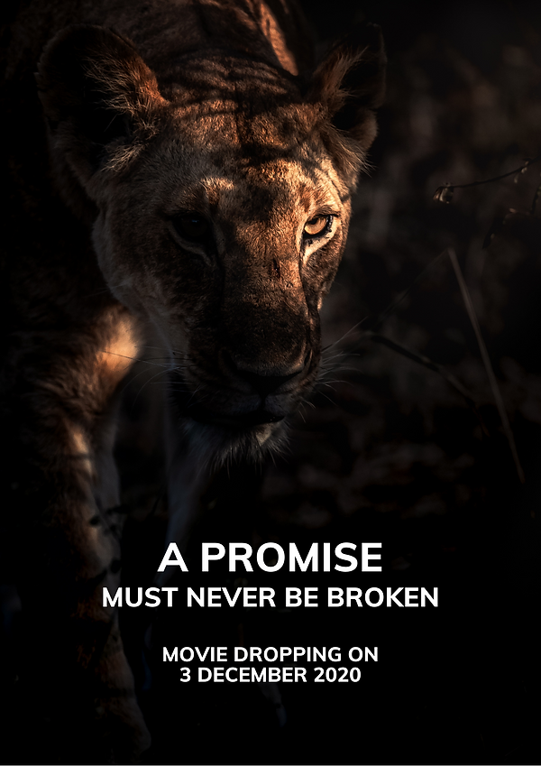 A Promise Must Never Be Broken - Emboo R