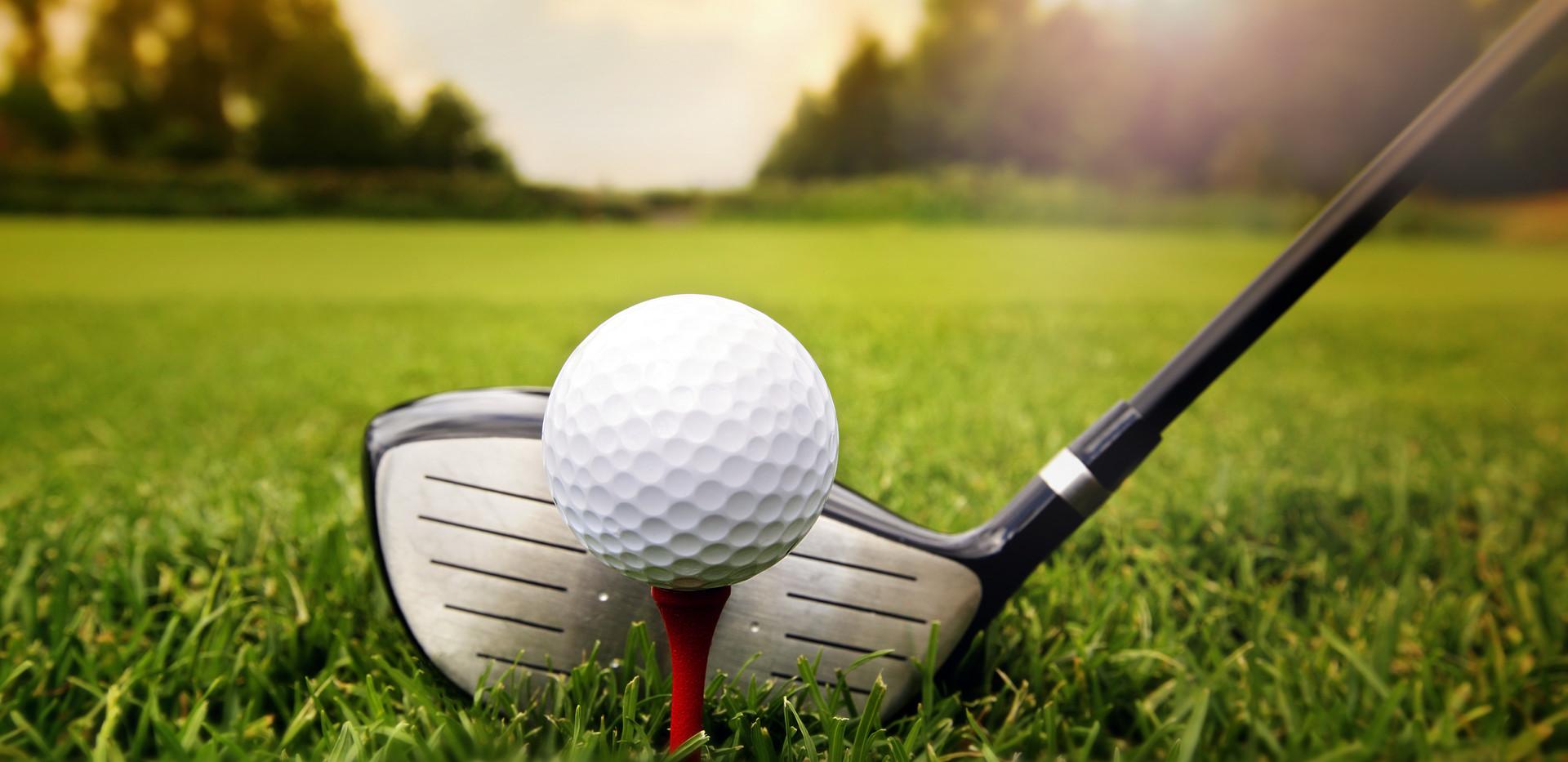 Golf club and ball in grass.jpg