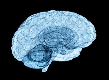 Modelo da Mente: O que é Consciente, Subconsciente e Inconsciente.