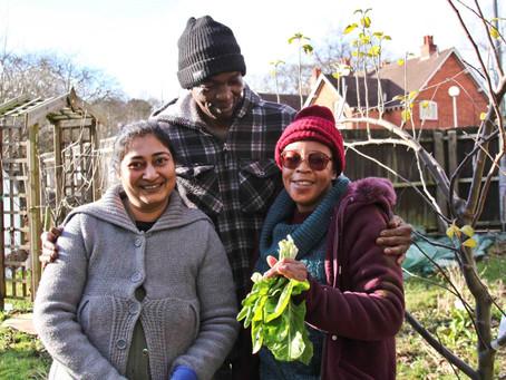 Kushinga community garden